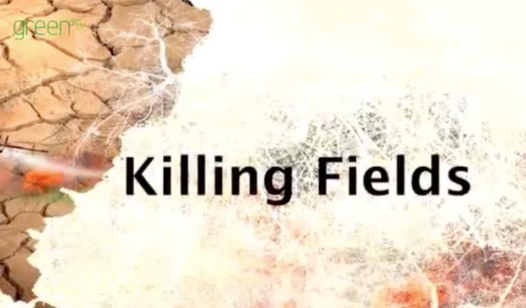 【SDGs TV】大豆栽培が引き起こす悲劇