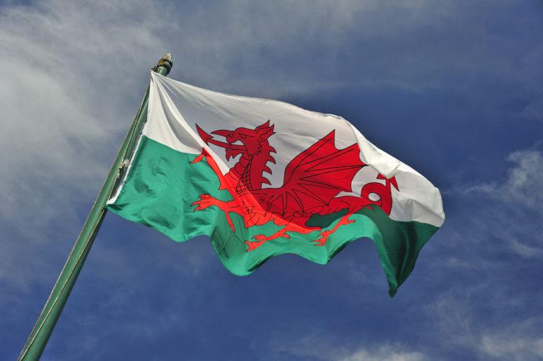 【イギリス】ウェールズ政府、使い捨てプラ禁止法の制定意向。EU新規制を独自に踏襲